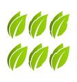 green leaf set eco vector image