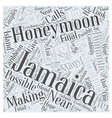 Honeymooning in Jamaica Word Cloud Concept vector image vector image
