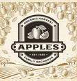 retro apples label on harvest landscape vector image vector image