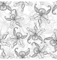 seamless monochrome background with lilies vector image