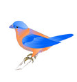 small songbirdon bluebird thrush vector image vector image