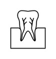 tooth nerve icon vector image vector image