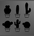 black cactuses in a pots set vector image vector image