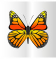 colorful butterfly with abstract decorative vector image vector image