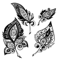 Ethnic ornamental plumes vector image