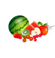 harvest juicy fruit and berries vector image