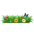 A butterfly in the garden with blooming flowers vector image vector image