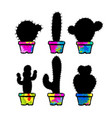 black cactuses in a pots set colorful concept vector image vector image