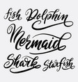fish and dolphin hand written typography vector image vector image