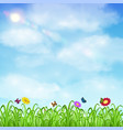 grass with flower and butterfly ladybug with sky vector image