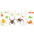 halloween red yellow and green spiders 3d vector image