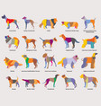 set colorful mosaic dogs silhouettes-2 vector image vector image