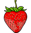 strawberry fruit cartoon vector image