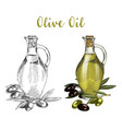 glassware bottle with oil liquid and tree branch vector image