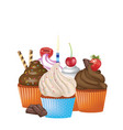 cupcakes set on white background vector image vector image