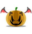 halloween pumpkin with bat wings vector image
