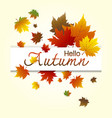 hello autumn maple leaves design vector image vector image