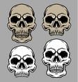 set of skull head vector image