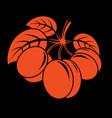 vegetarian organic food simple ripe sweet orange vector image vector image