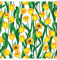 yellow tulips pattern vector image vector image
