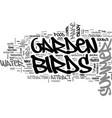 a summer garden for the birds text word cloud vector image vector image