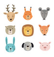 animal faces including deer vector image