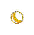 bananan fruits template logo vector image