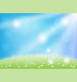 beautiful meadow with flowers vector image
