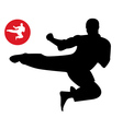 Karate in the jump vector image vector image
