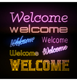 Neon sign Welcome vector image vector image