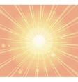 Sunburst ray retro background vector image