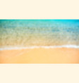 tropical seashore top view close up blurred vector image vector image