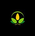 flower beauty spa lotus bio logo vector image vector image