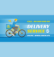 food or parcel delivery bicycle vector image vector image