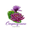 lotus logolotus flower logobeauty logofashion vector image vector image
