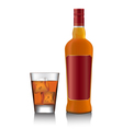Whiskey bottle and glass vector image vector image
