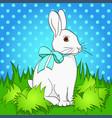 pop art easter bunny on green grass comic book vector image