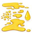 set of orange honey drops and yellow splashes vector image