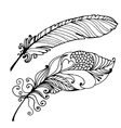 Bird Feather Hand Drawn vector image vector image