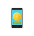 bitcoin icon of golden color on the screen of a vector image