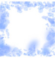 dark blue flower petals falling down eminent roma vector image