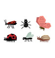 geometric insects set spider bug ladybug vector image