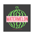 logo template with side view of stylized striped vector image vector image