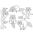 set cute cartoon raccoons vector image vector image