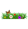 A garden with blooming flowers and a butterfly vector image vector image