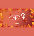 autumn season background for sale promotion vector image vector image