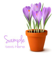 fresh spring flowers easter background vector image