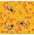 honeycells bees seamless vector image vector image