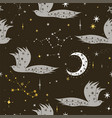 night birds seamless pattern with stars graphics vector image