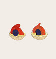 strawberry and blueberry mini tart sketch vector image